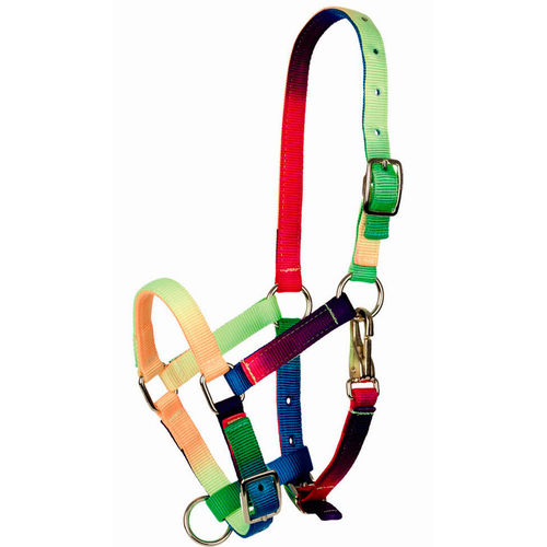 Capezza Tattini multicolore PONY